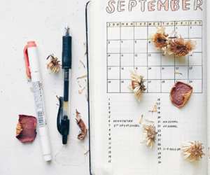 cool, fall, and journal image