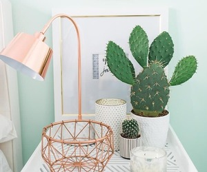 room, decoration, and cactus image