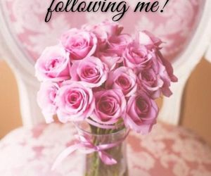 flowers, follow, and OMG image
