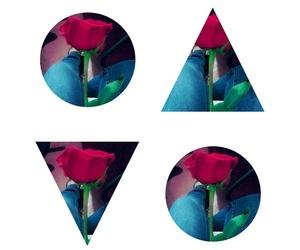 rojo, rosas, and espinas image