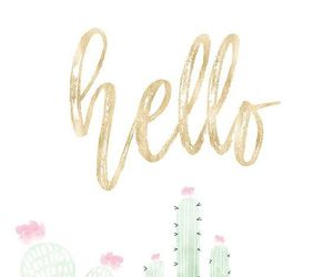 wallpaper, hello, and cactus image