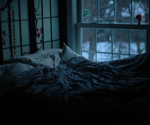 bed, window, and night image