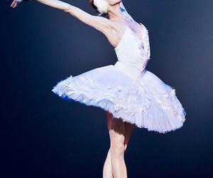 ballet, Swan, and liberty image