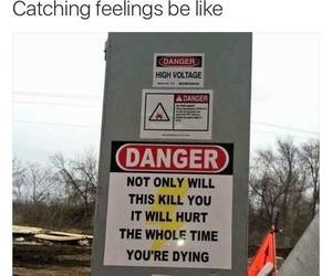 funny, crush, and danger image