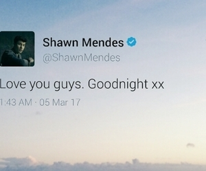 tumblr, shawn peter raul mendes, and twitter image