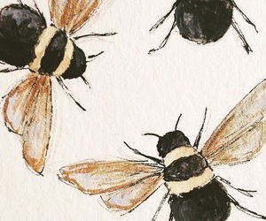 art, bugs, and color image