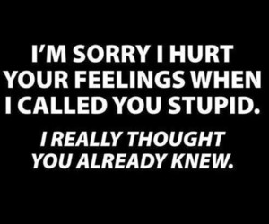 stupid, funny, and quotes image