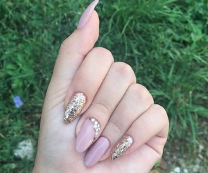 classy, gold, and nails image
