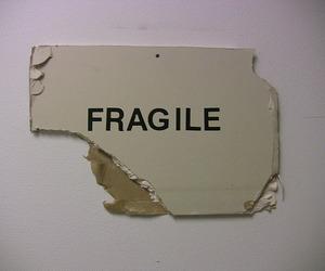 fragile, grunge, and aesthetic image