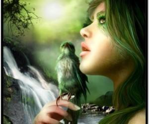 art, bird, and green image