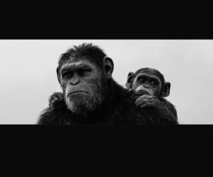 black and white and planet of the apes image
