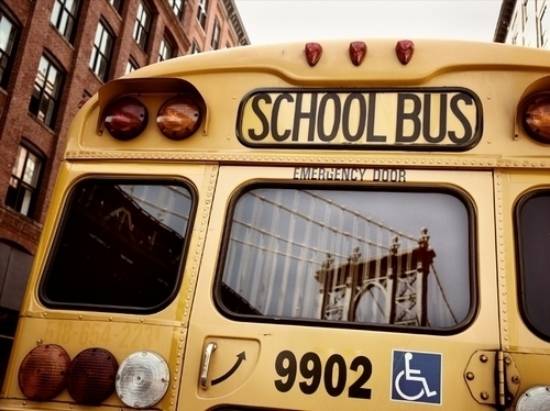 school, bus, and school bus image
