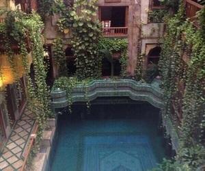 pool, plants, and travel image