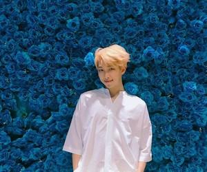 blue, pretty, and cute image
