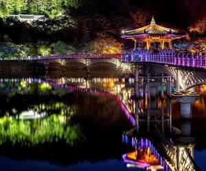 city, lights, and night life image