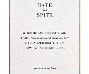 evil, hate, and quote image