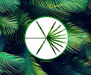 edit, exo, and Logo image