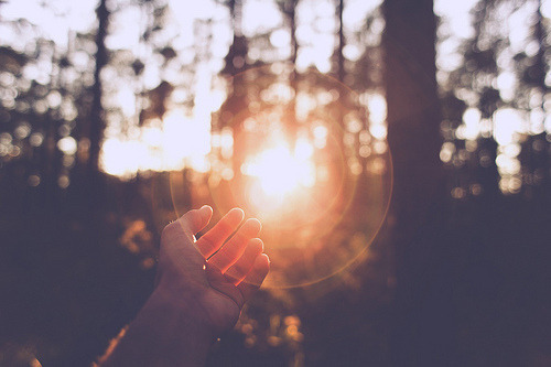 sun, photography, and hand image
