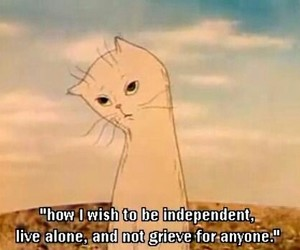 quote, alone, and cat image