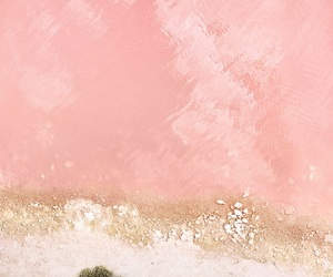 pink, wallpaper, and iphone wallpaper image