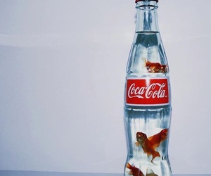 fish, coca cola, and coca-cola image