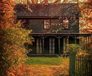 autumn, country living, and fall image