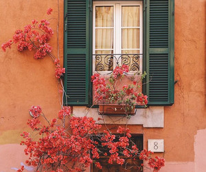 flowers, house, and beautiful image