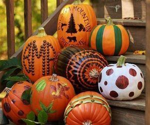 fall and pumpkins image