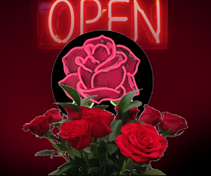 beautiful, neon, and flower image