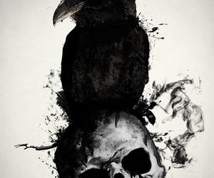 art, raven, and skull image