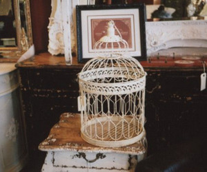 vintage, cage, and birdcage image