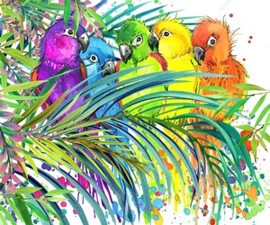 birds, colorful, and doodle image