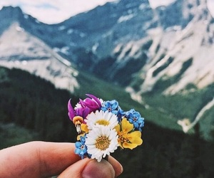 flowers, mountains, and nature image
