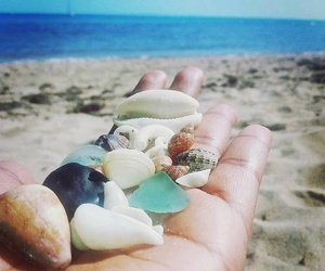 beach, shell, and hand image
