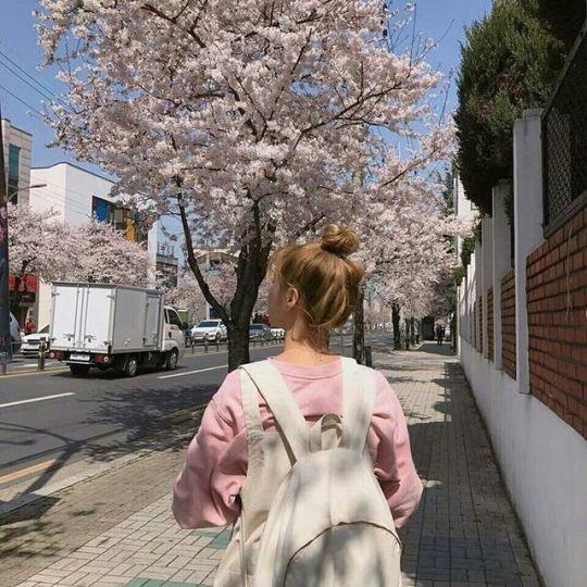 pink, korean, and ulzzang image