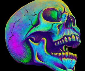 skull, black, and skeleton image