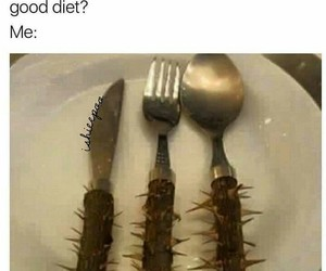 diets, hilarious, and memes image