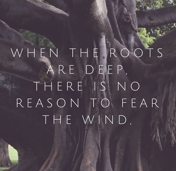 quotes and roots image
