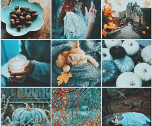pumpkin, aesthetic, and autumn image