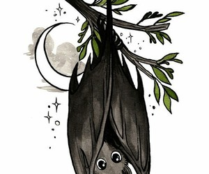 bat, branches, and black image