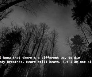 dark, Darkness, and depression image