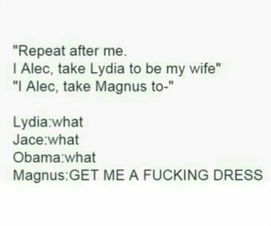 jace, fanfic, and shadowhunters image