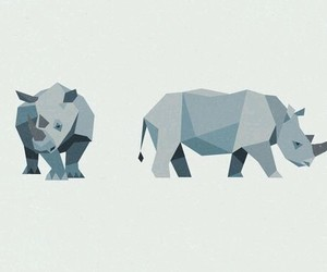 animal and rhino image