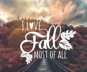 fall, autumn, and wallpaper image