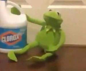 memes, clorox, and momos image