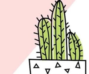 cactus, pink, and plantas image