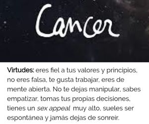 cancer, zodiaco, and frases español image