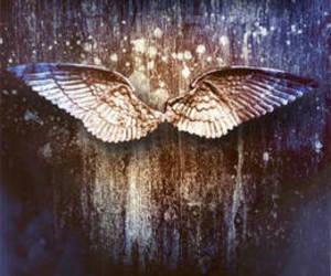 book, angelfall, and susan ee image