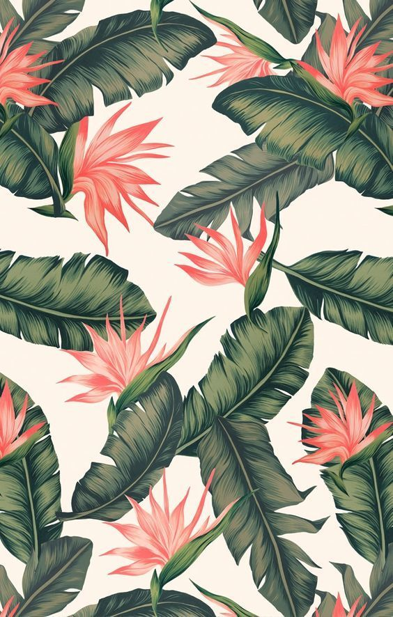 Save This Cute Hawaiian Wallpaper To Brighten Up Your Phone