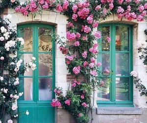 cottage, shabby, and flowers image